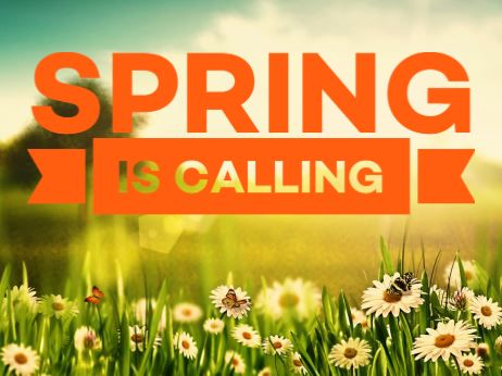 Spring Is Calling